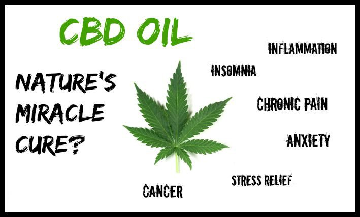 CBD Oil - Videos on How To Make Your Own CBD Oil