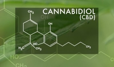 Here's 10 important CBD facts that you need to know.